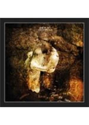 Pain Of Salvation - Linoleum EP (Music CD)