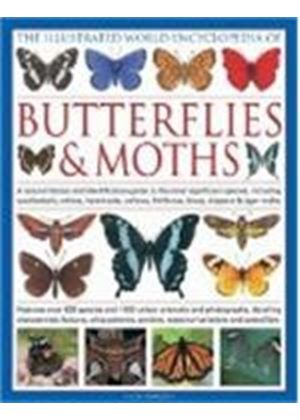 Illustrated World Encyclopaedia Of Butterflies And Moths