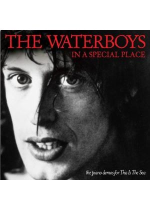 The Waterboys - In A Special Place (Music CD)