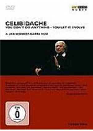 Celibidache - You Don't Do Anything - You Let It Evolve
