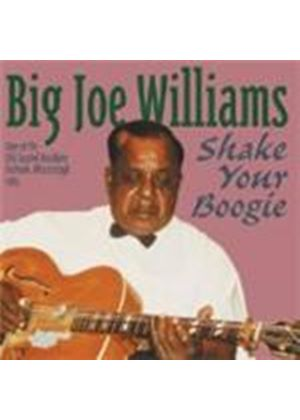 Big Joe Williams - SHAKE YOUR BOOGIE