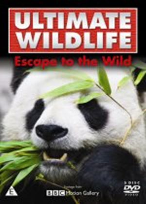 Ultimate Wildlife – Escape to the Wild