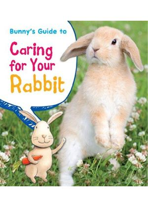 Bunnys Guide To Caring For Your Rabbit