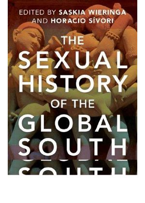 Sexual History Of The Global South
