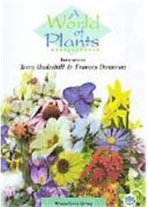 World Of Plants - Winter And Early Spring, A