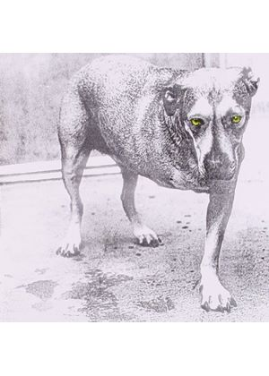 Alice In Chains - Alice In Chains (Music CD)