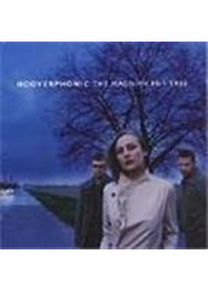 Hooverphonic - Magnificent Tree, The