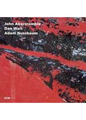 John Abercrombie - While Were Young (Music CD)