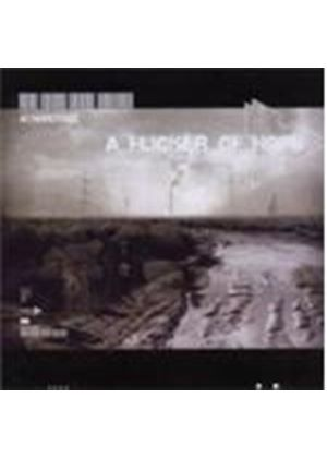 Wynardtage - Flicker Of Hope, A (Music CD)