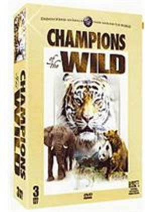 Champions Of The Wild