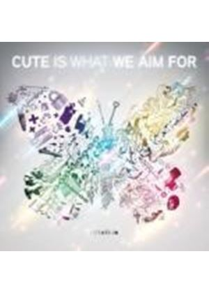 Cute Is What We Aim For - Rotation (Music CD)