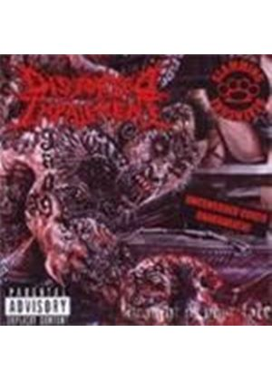Distorted Impalement - Straight In Your Face (Music CD)