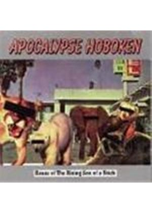 Apocalypse Hoboken - House Of The Rising Son Of A Bitch