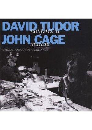 John Cage/David Tudor - Mureau/Rainforest II