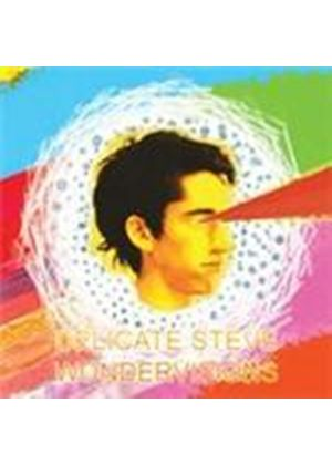 Delicate Steve - Wondervisions (Music CD)