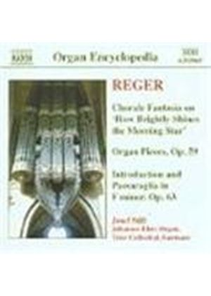 Reger: Organ Works Vol 4