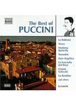 Various Artists - The Best Of Puccini (Music CD)