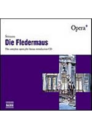 Johann Strauss - Die Fledermaus (Wildner, Slovak Radio SO) (Music CD)