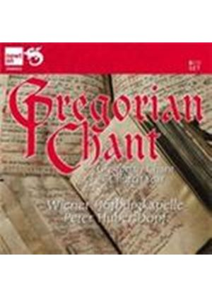 Gregorian Chant for the Church Year (Music CD)