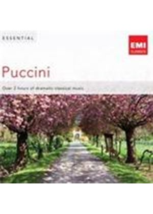 Essential Puccini (Music CD)