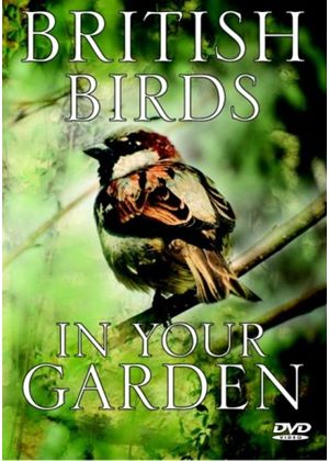 British Birds In Your Garden