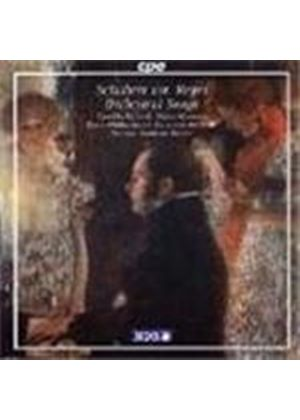 Schubert: Songs, orch Reger