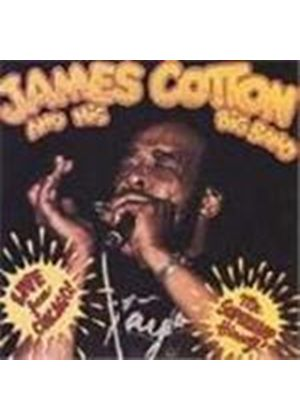 James Cotton - Live From Chicago (Mr Superharp Himself)