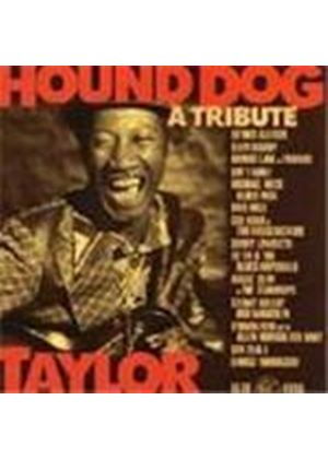 Various Artists - Tribute To 'Hound Dog' Taylor, A