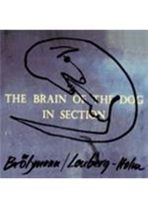 Peter Brotzmann & Fred Longberg-Holm - Brain Of The Dog In Section, The (Music CD)
