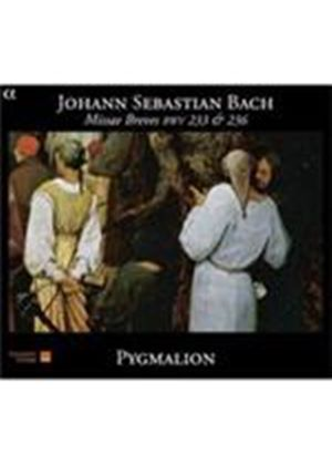 Bach: Missae Breves BWV233 & BWV236 (Music CD)