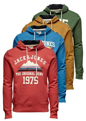 Mountain Hoodie in Four Styles