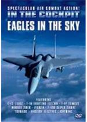 In The Cockpit - Eagles In The Sky