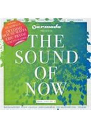 Various Artists - Sound Of Now 2010 Vol.2, The (Music CD)