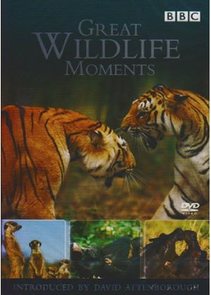 Great Wildlife Moments With David Attenborough