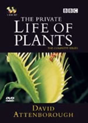 Private Life Of Plants, The (Two Discs)