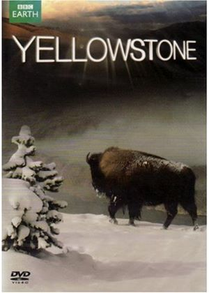 Yellowstone: Tales from the Wild