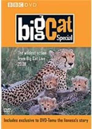 Big Cat Diary - The Special