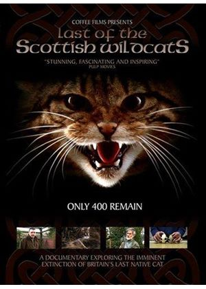 Last Of The Scottish Wildcats