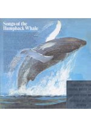 Song Of The Humpback Whale - Song Of The Humpback Whale (Music CD)