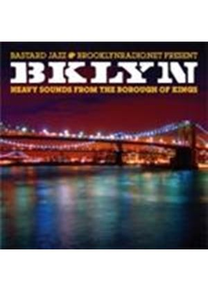 Various Artists - BKLYN: Heavy Sounds From The County Of Kings (Music CD)