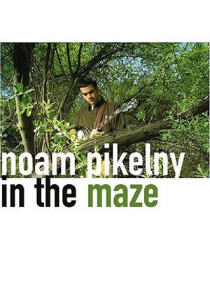 Noam Pikelny - In The Maze