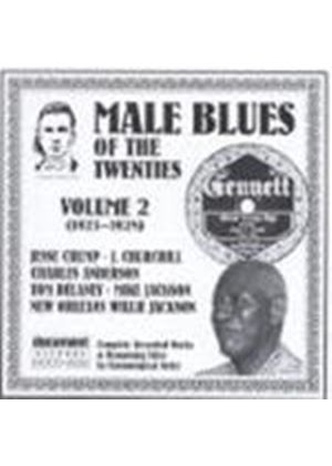 Various Artists - Male Blues Of The Twenties Vol.2 1923-1928