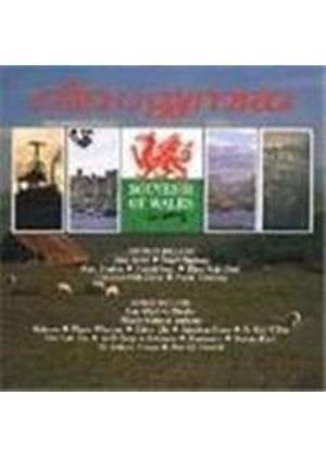 Various Artists - Souvenir Of Wales In Song