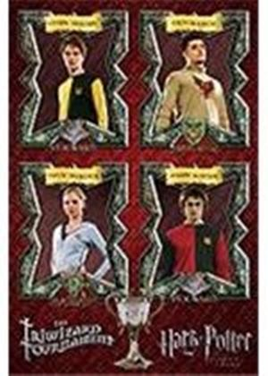 Harry Potter 4 - Triwizard Tournament (Maxi Poster) (221)