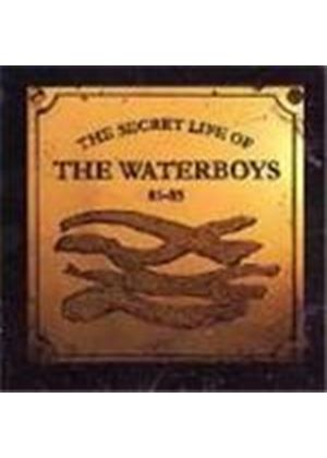 Secret Life Of The Waterboys (The) - Secret Life Of The Waterboys 1981-1985, The
