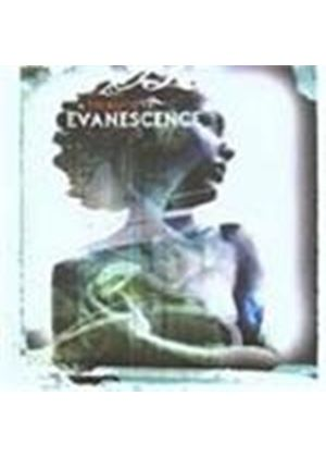 Static Heaven - Tribute To Evanescence, A