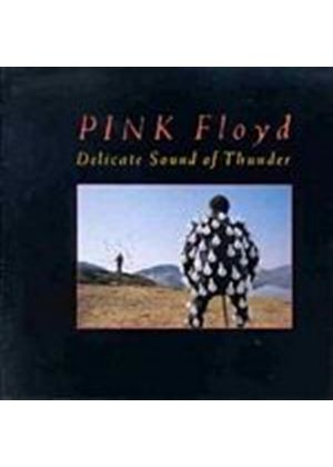 Pink Floyd - Delicate Sound Of Thunder (2 CD) (Music CD)