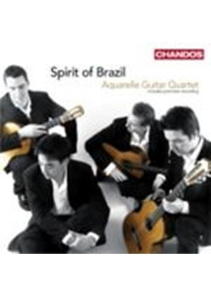 Spirit of Brazil (Music CD)