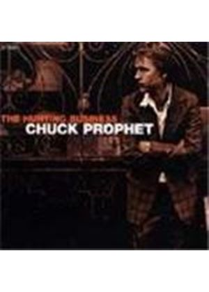 Chuck Prophet - Hurting Business, The