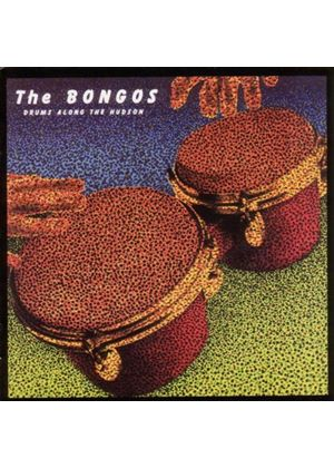 BONGOS - DRUMS ALONG THE HUDSON